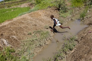A young child is seen crossing one of the canals of the Artibonite River, identified as the source of the cholera outbreak. Credit: UN Photo/Sophia Paris